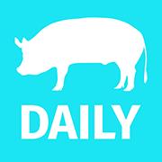 Swine Daily