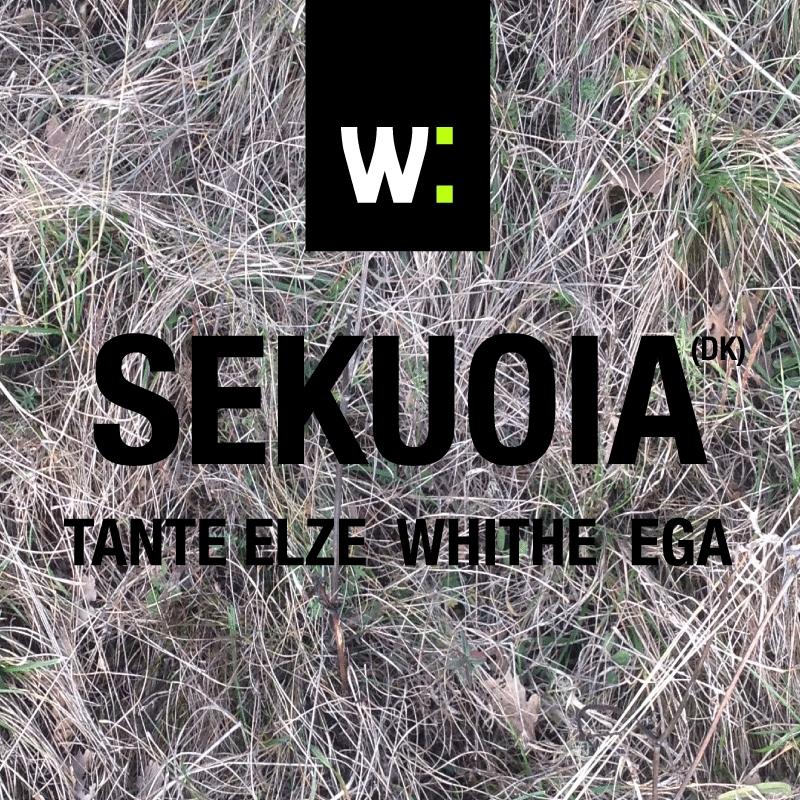 Wilsonic presentuje: EGA a Tante Elze budú predskakovať SEKUOIA už dnes večer