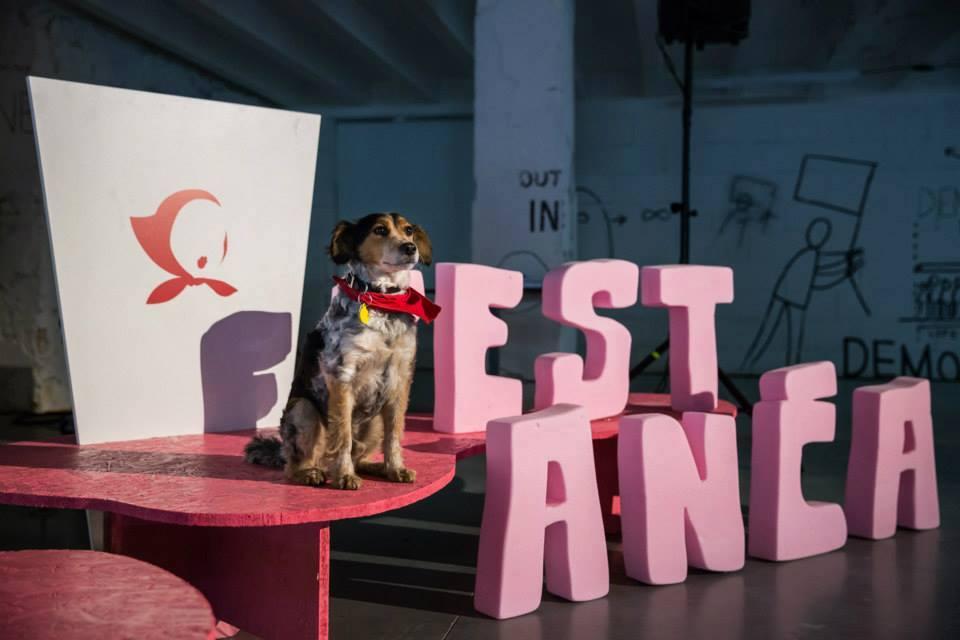Aký bol 8. ročník medzinárodného festivalu Fest Anča 2015 (fotoreport)