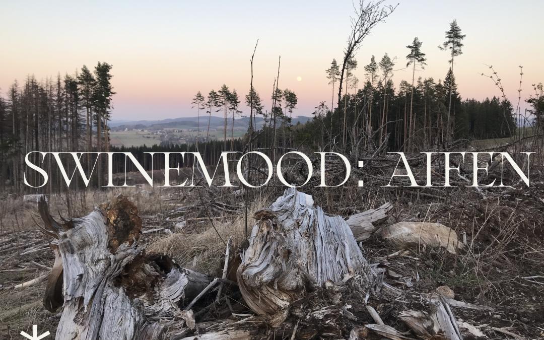SWINEMOOD_01: Čo inšpiruje čínsko-poľskú umelkyňu Ai Fen?