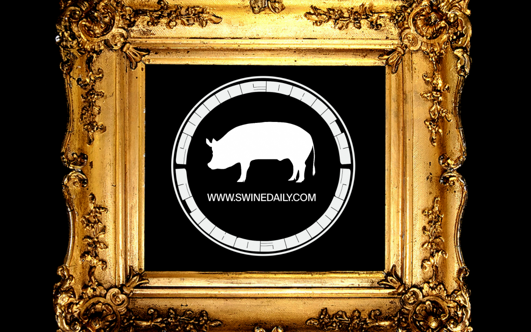 WTF are NFTs? A Swine Guide to Crypto-Art and Collector Economics